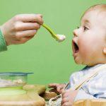 اصول غذایی برای نوزاد هفت و هشت ماهه